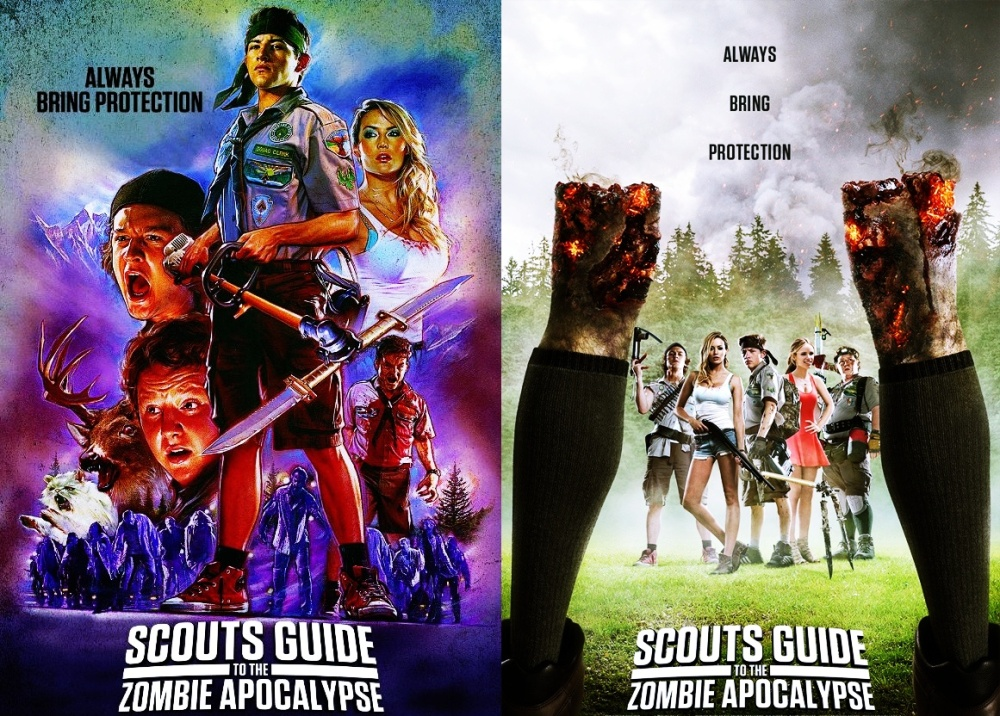scouts guide poster double