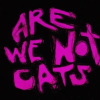 Tráiler Indie: Are We Not Cats (V.O)